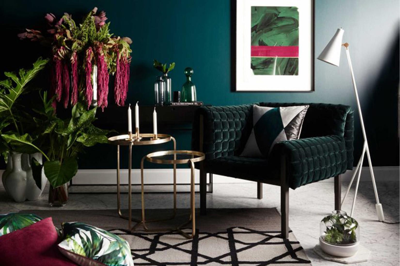 Vibrant, Patterned Plants