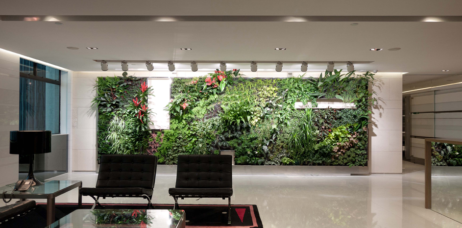 Biophilic design- stress reduction, health and well-being