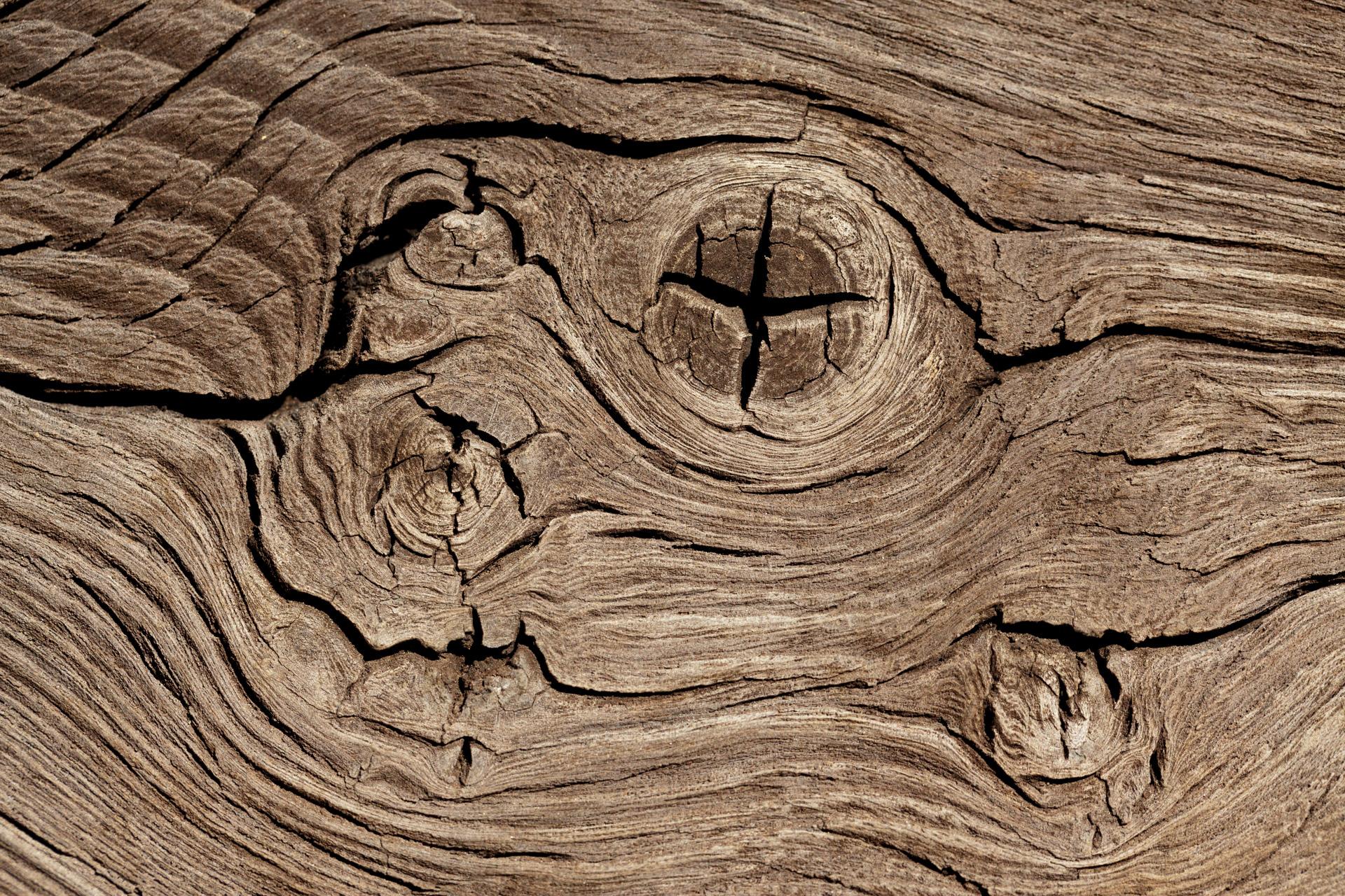 wood-knots